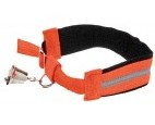 sikkerheds-halsband